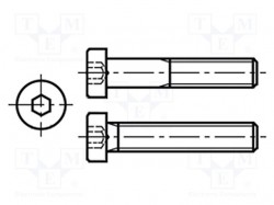 Screw; M5x30; DIN:7984; Head: cheese head; imbus; steel; zinc